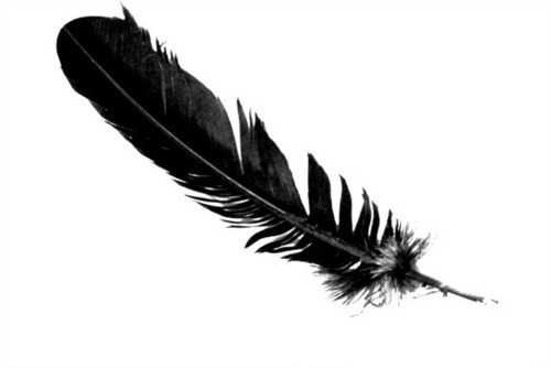 black-feather2